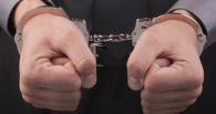 В Тамбове задержали уроженца Тульской области по подозрению в избиении ребёнка и грабеже