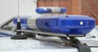 На территории одной из тамбовских школ полицейские остановили драку