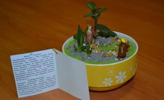 Тамбовские студенты создадут «Фитосчастье»