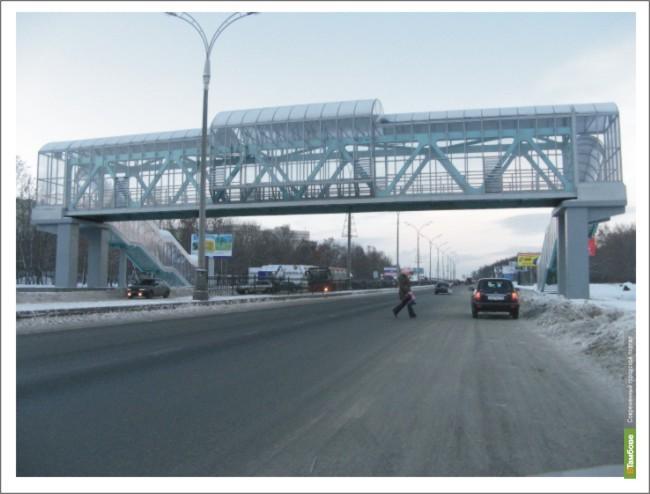 На автодорогах Тамбовщины появятся надземные пешеходные переходы