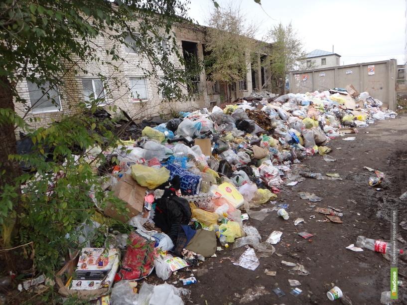 В Тамбове вырос мусорный вал