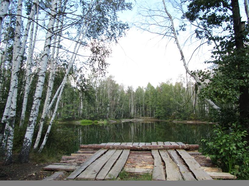 В Тамбове опубликовали доклад о состоянии окружающей среды