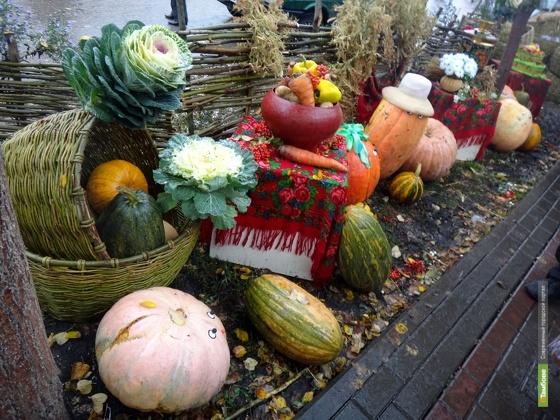 На Покровской ярмарке аграрии продали 300 тонн овощей