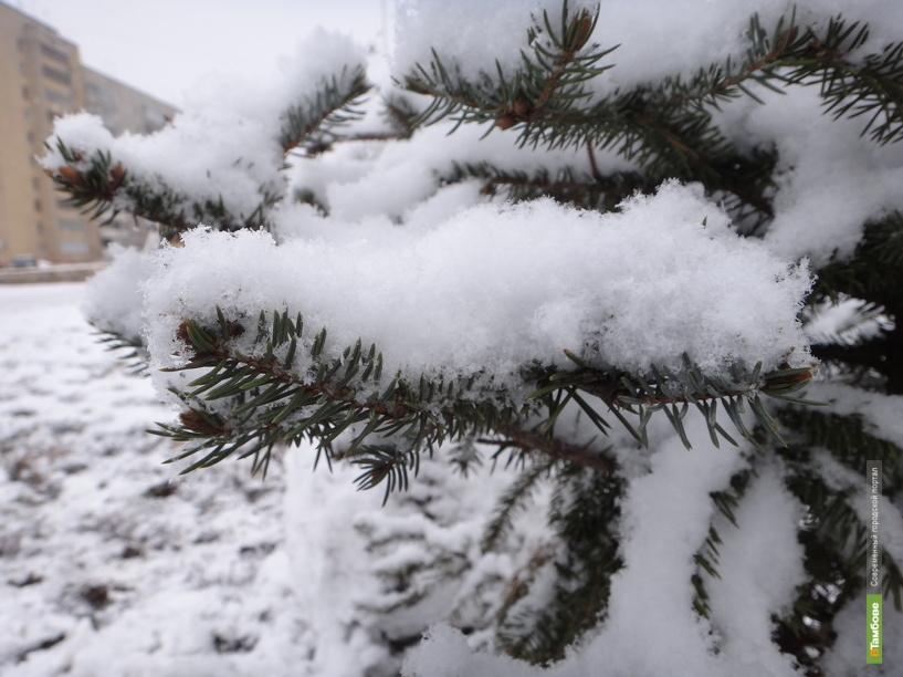 Снегопад отступил от Тамбова