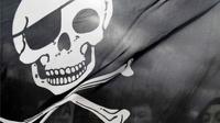Антипиратский закон хотят распространить на музыку, изображения и книги
