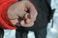 В челябинском метеорите ученые нашли ржавчину