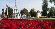 На Соборной площади посадили 1700 бордюрных роз