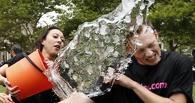 Обливайся или плати: флешмоб Ice bucket challenge захватил весь мир