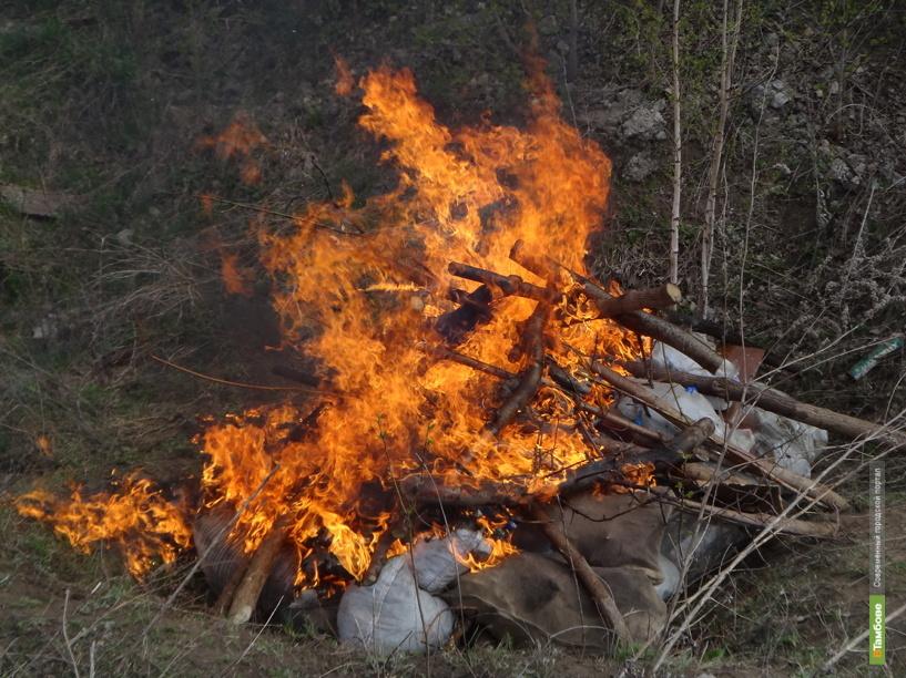 В Тамбове уничтожили более 70 килограммов наркотиков