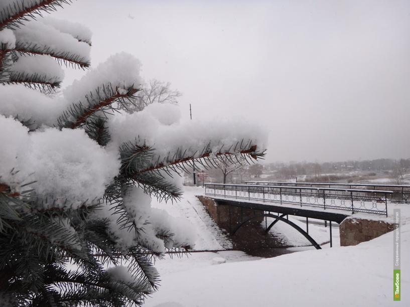 Сильные морозы отпустят Тамбовскую область