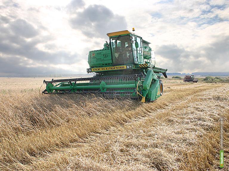 Тамбовские власти формируют программу развития сельского хозяйства