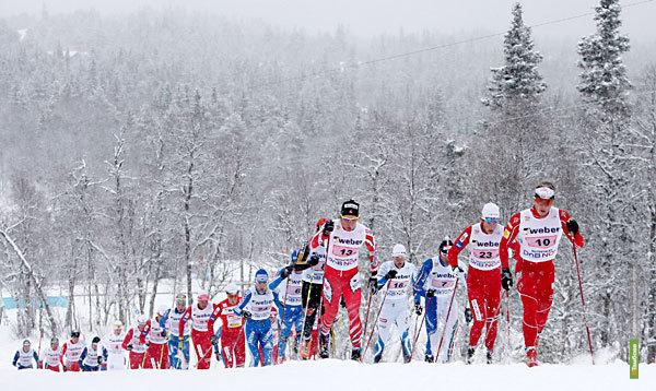 """Трое тамбовских спортсменов привезли """"золото"""" с Всероссийского лыжного марафона"""