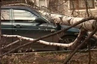 Тамбовчанин будет судиться с УЖК из-за разбитого авто