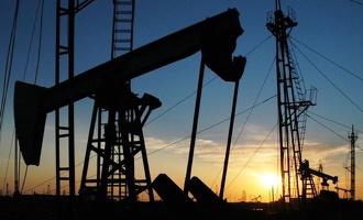 Добыча нефти в этом году увеличилась
