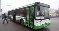 В Тамбове появится больше комфортабельных автобусов