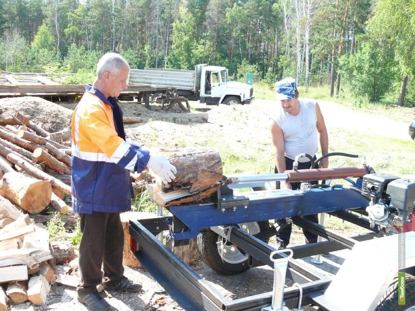 За полгода тамбовские лесники заработали почти 250 миллионов рублей