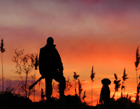 На Тамбовщине скоро откроется сезон осенне-зимней охоты