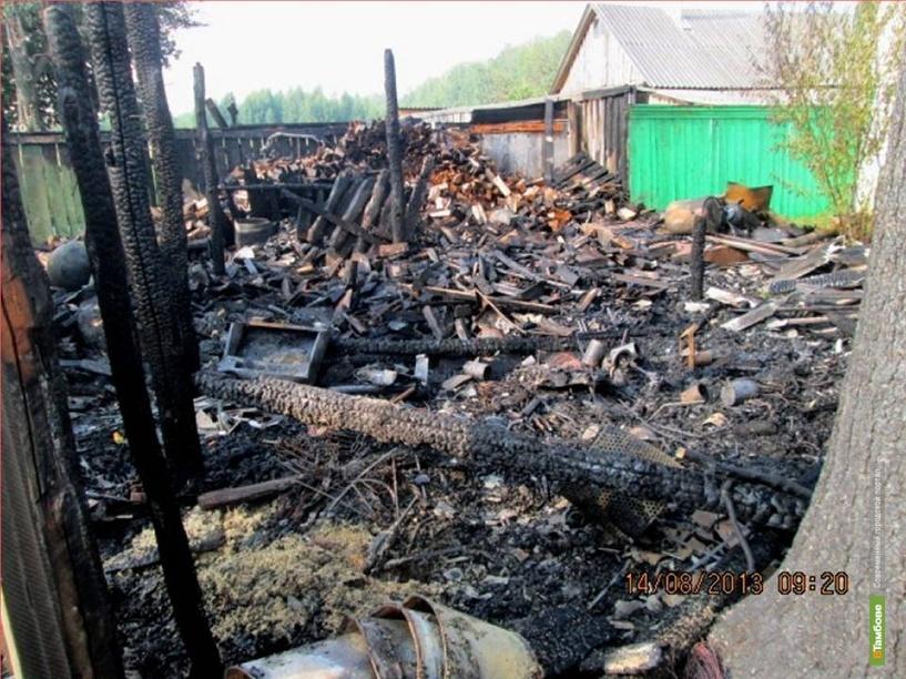 В Тамбовской области молнии стали причиной пожаров