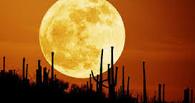 Ученые провели интернет на Луну