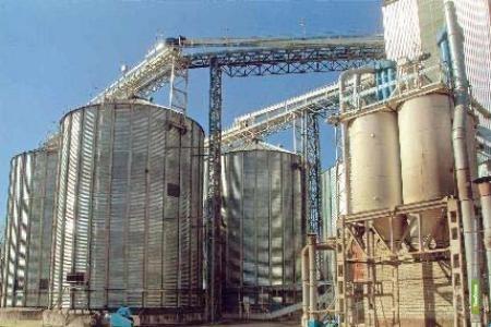 В Тамбовское растениеводство воронежские инвесторы вложат более миллиарда рублей