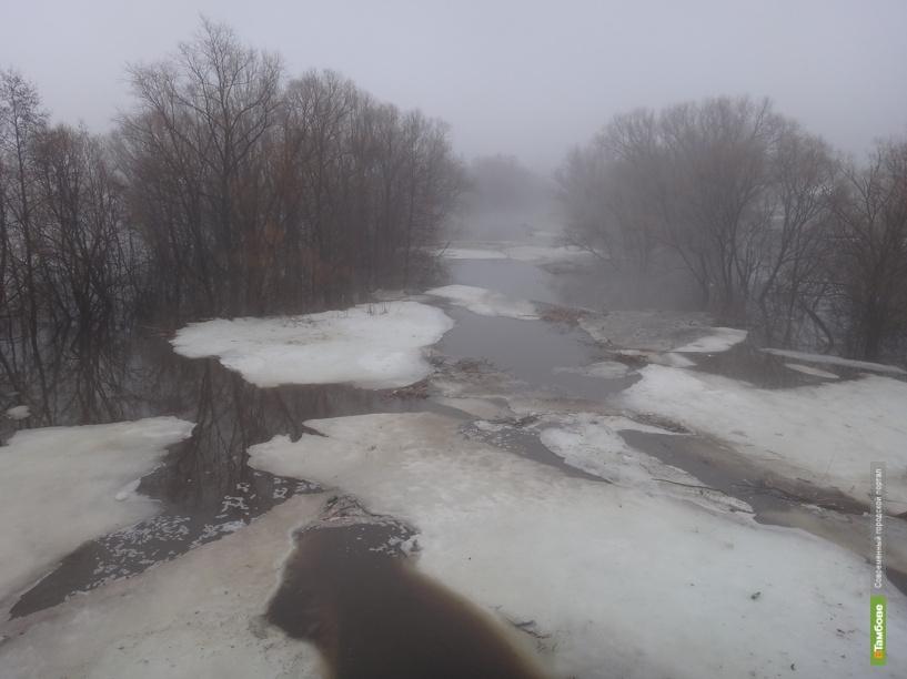 Вода в Цне за сутки поднялась местами на полметра