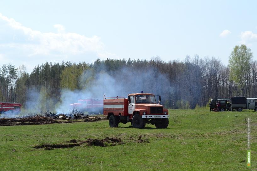 На Тамбовщине за год потушили 13 лесных пожаров