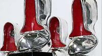 «Серебряной калошей» занялась прокуратура