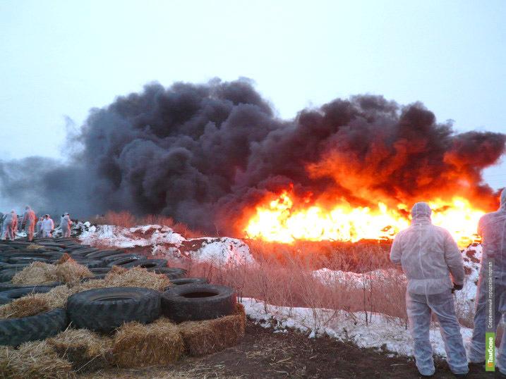 В Рассказовском районе не принимали профилактических мер по предупреждению АЧС