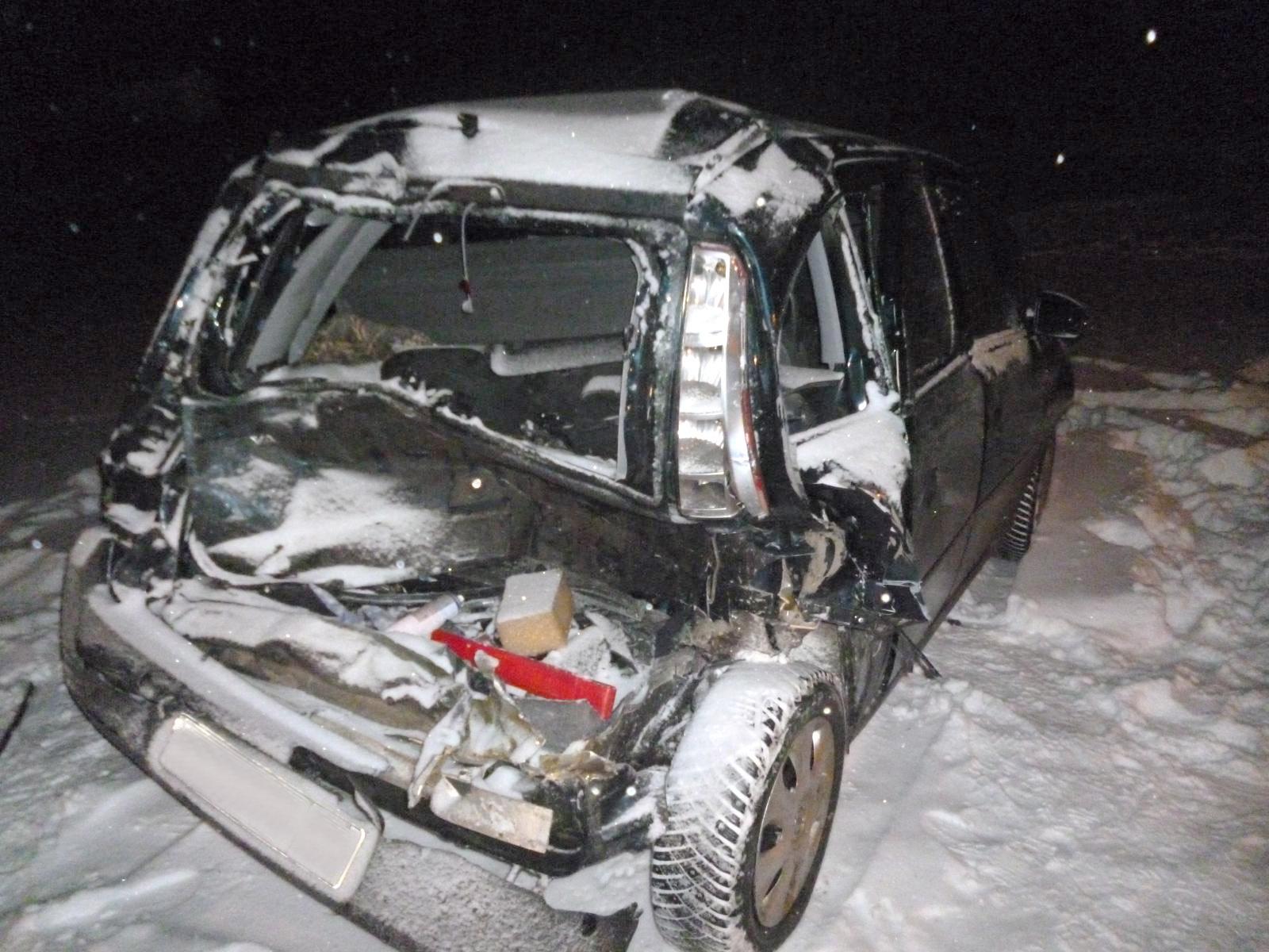 ВТамбовской области из-за нетрезвого водителя пострадал 8-летний ребенок