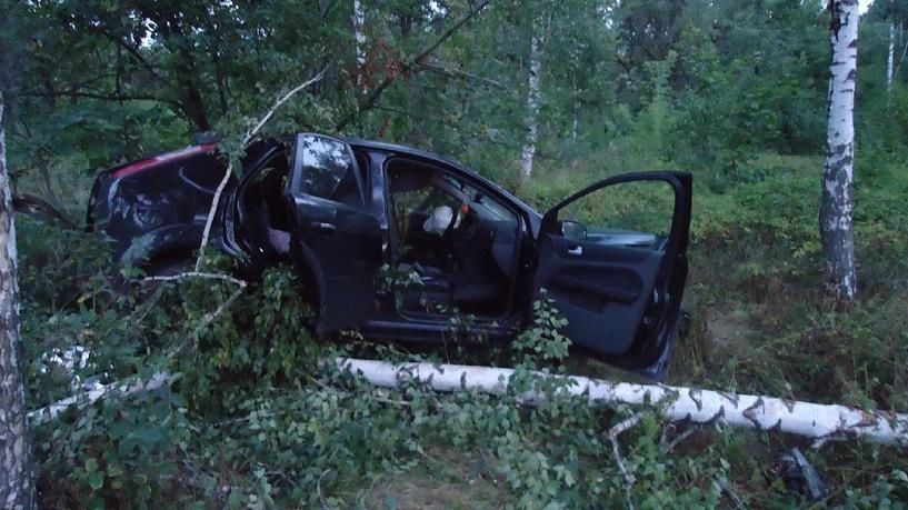 На трассе в Инжавинском районе иномарка слетела в кювет и наехала на дерево
