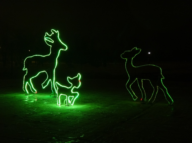 Тамбовчан приглашают на массовые новогодние мероприятия