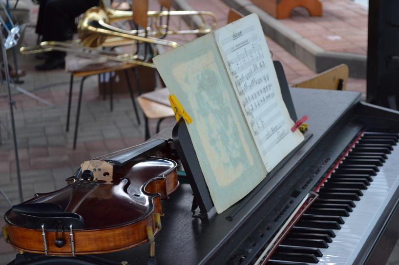 В Тамбове будут гостить редкие музыкальные инструменты