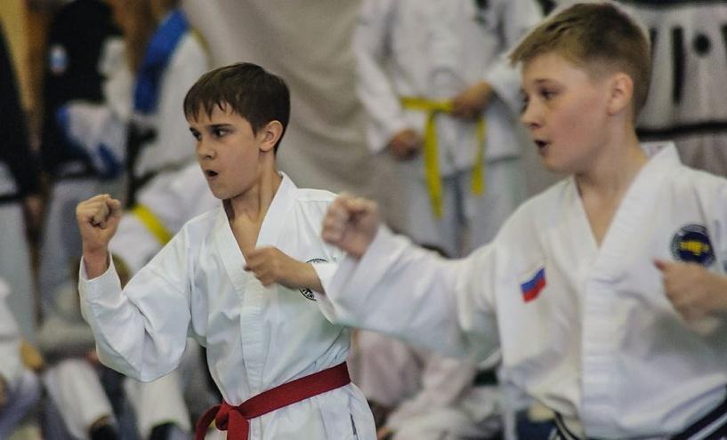 Российская летняя школа Кекусинкай пройдёт на Тамбовщине
