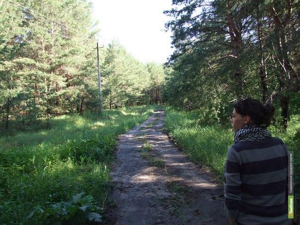 Леса занимают более 10 процентов Тамбовской области