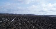 Мужчина отдал 10 гектаров земли за долги
