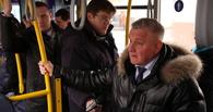 Глава города пообещал, что зеленые зоны в Тамбове застраивать не будут