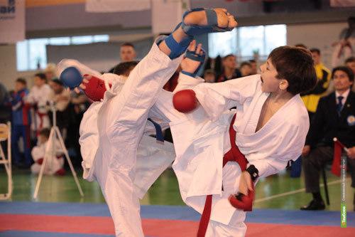 В Тамбове пройдет первый областной чемпионат по боевому единоборству сетокан