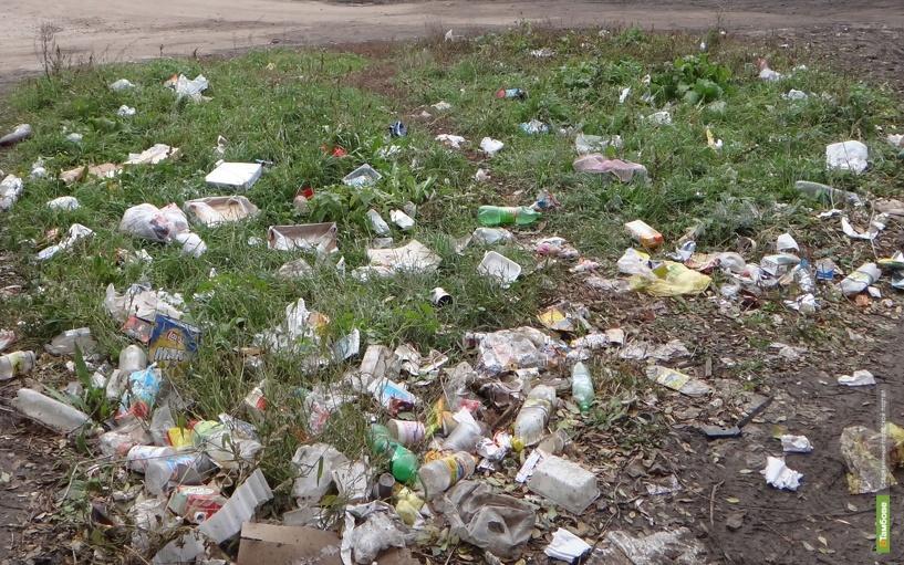 На уборку парков в Тамбове вышло более 3 тысяч студентов