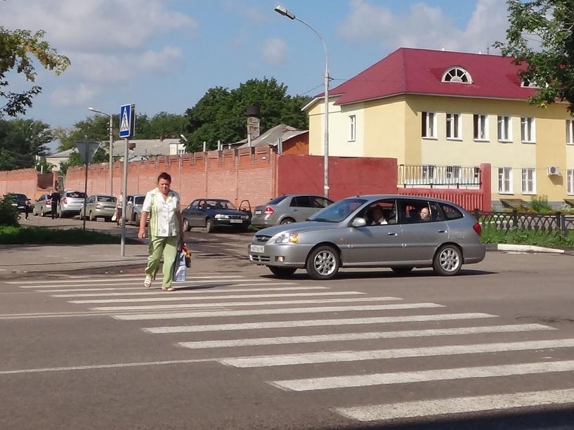 Тамбовские автоинспекторы вышли на очередной рейд