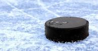 На Всероссийском финале ночной хоккейной лиги наш регион представят «Ветераны Тамбова»