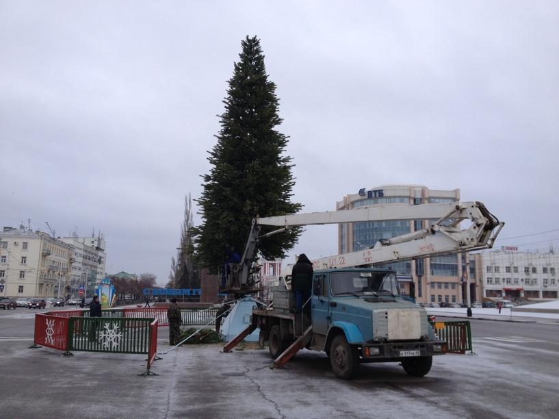 В Тамбове «оживляют» главную новогоднюю ёлку