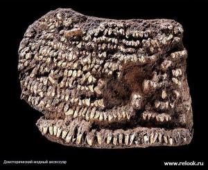 Археологи нашли дамскую сумочку, принадлежавшую модницам каменного века
