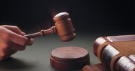 Тамбовчанин проведёт в тюрьме 6,5 лет за зверское убийство
