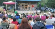 В Тамбовской области пройдет музыкальный фестиваль «Там, под Лысой Горой»