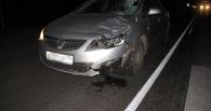 На трассе в Кирсановском районе иномарка насмерть сбила пешехода