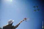 В тамбовском небе летчики покажут фигуры высшего пилотажа
