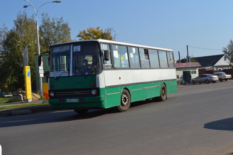 Власти Тамбова хотят обновить общественный транспорт
