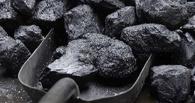 Под Мичуринском мужчина украл тонну угля