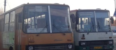 Автопарк общественного транспорта Тамбова за год обновился на 86 единиц