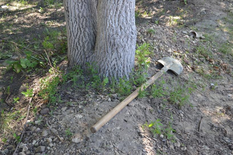 Тамбовчанин, забетонировавший тело приятеля в сливной яме, отправится в тюрьму